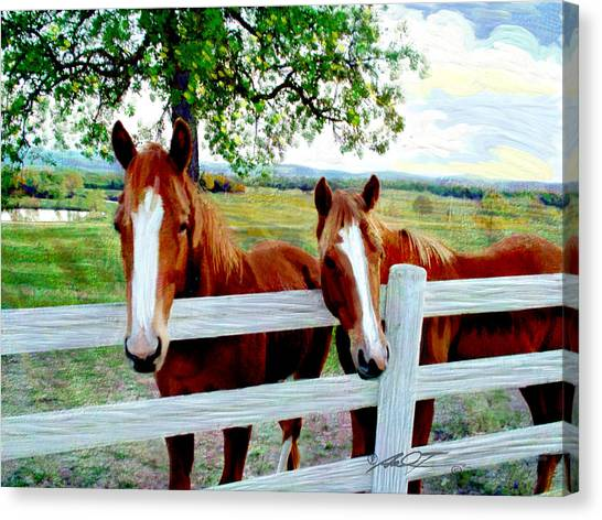 Twin Ponies Canvas Print