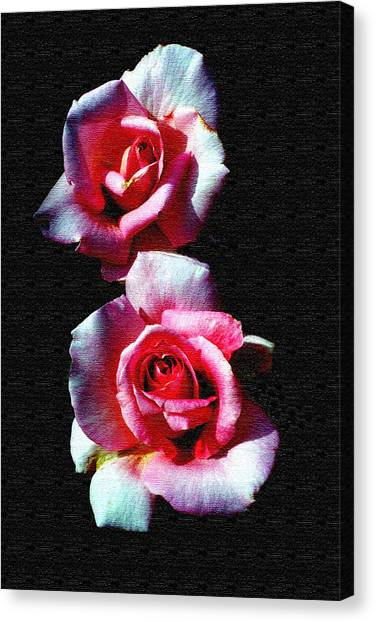 Twin Roses Canvas Print by Ralph  Perdomo