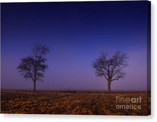 Canvas Print featuring the photograph Twin Trees In The Mississippi Delta by T Lowry Wilson