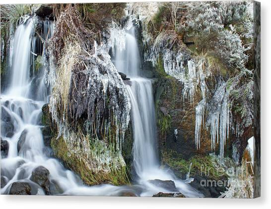 Twin Winter Waterfalls Canvas Print