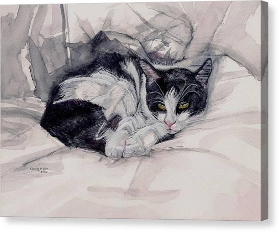 Twinkle The Cat Canvas Print by Chana Helen Rosenberg