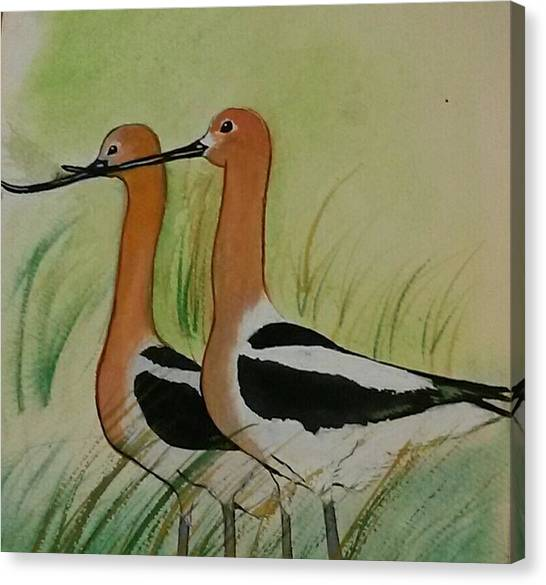 Twins Of Feathers Canvas Print