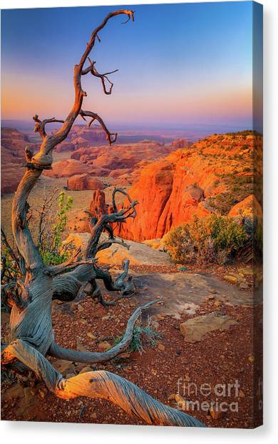 Dead Canvas Print - Twisted Remnant by Inge Johnsson