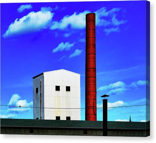 Canvas Print featuring the photograph Two Birds On A Wire In Paterson by Chris Lord