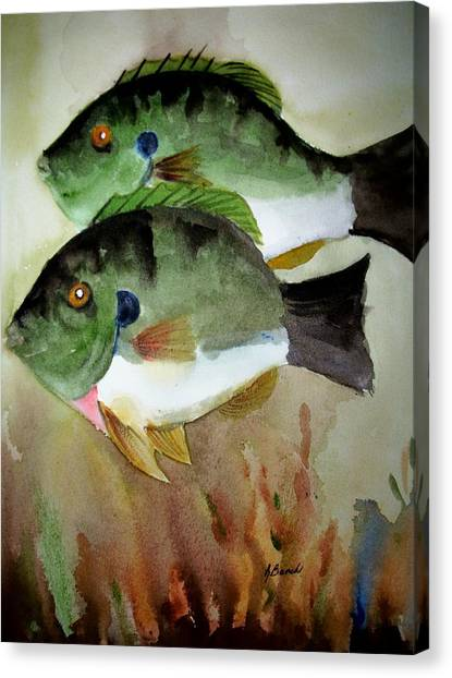 Two Bluegills Canvas Print by Audrey Bunchkowski