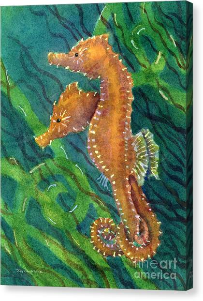 Seahorses Canvas Print - Two By Sea by Amy Kirkpatrick