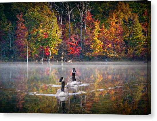 Two Canadian Geese Swimming In Autumn Canvas Print