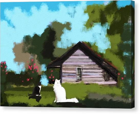 Two Cats In The Yard Canvas Print by Jennifer Buerkle