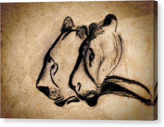 Two Chauvet Cave Lions Canvas Print