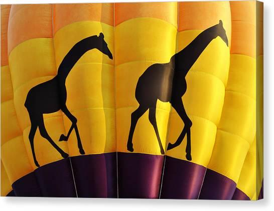 Two Giraffes Riding On A Hot Air Balloon Canvas Print