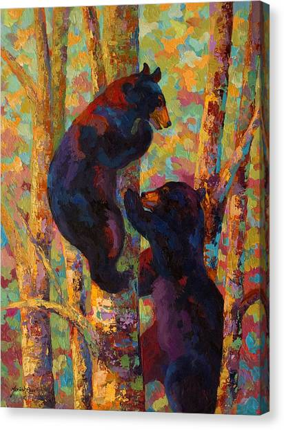 Two High - Black Bear Cubs Canvas Print