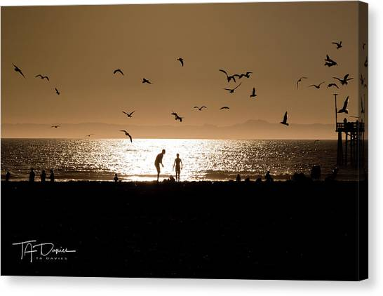 Two In Sun Canvas Print