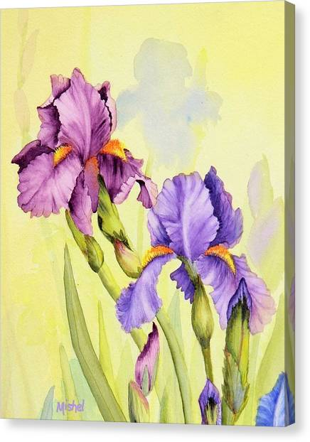 Two Irises  Canvas Print