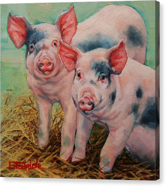 Two Little Pigs  Canvas Print