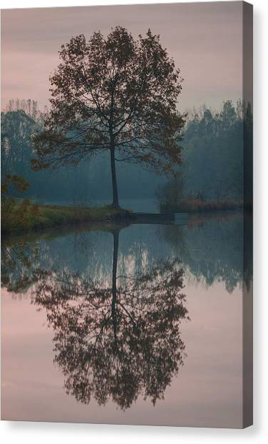 Canvas Print featuring the photograph Two Loners by Davor Zerjav