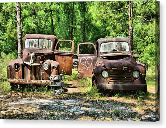 Two Old Dogs Canvas Print