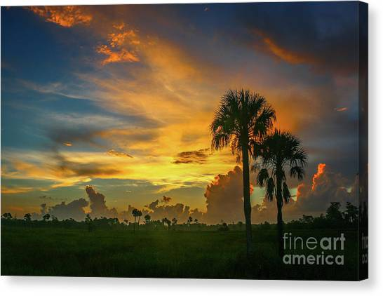 Canvas Print featuring the photograph Two Palm Silhouette Sunrise by Tom Claud