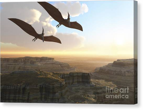 Pterodactyls Canvas Print - Two Pterodactyl Flying Dinosaurs Soar by Corey Ford