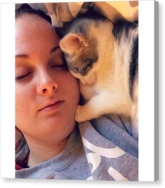 Ivory Canvas Print - Two Sleepyheads 😴 #kittycuddles by Jessica Weaver