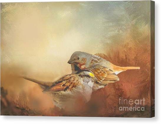 Sparrows In The Marsh 2 Canvas Print