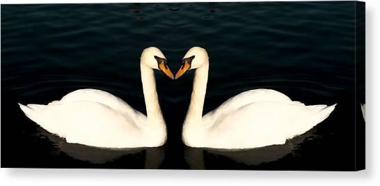Two Symmetrical White Love Swans Canvas Print
