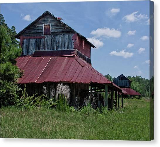 Two Tobacco Barns Canvas Print