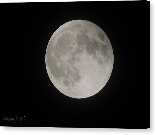 Two-tone Gray Moon Canvas Print