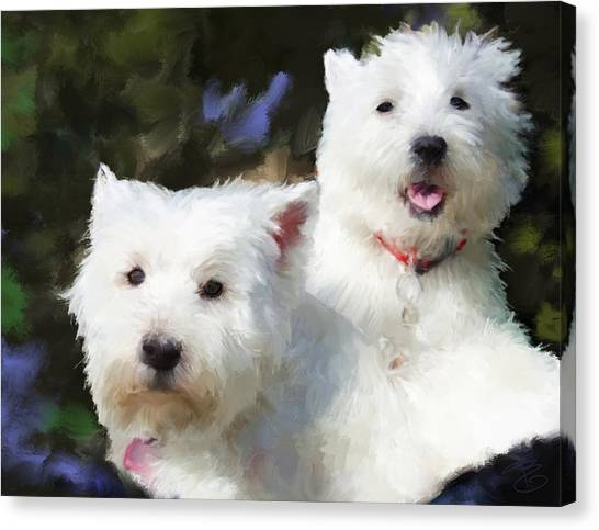 Two Westies Canvas Print