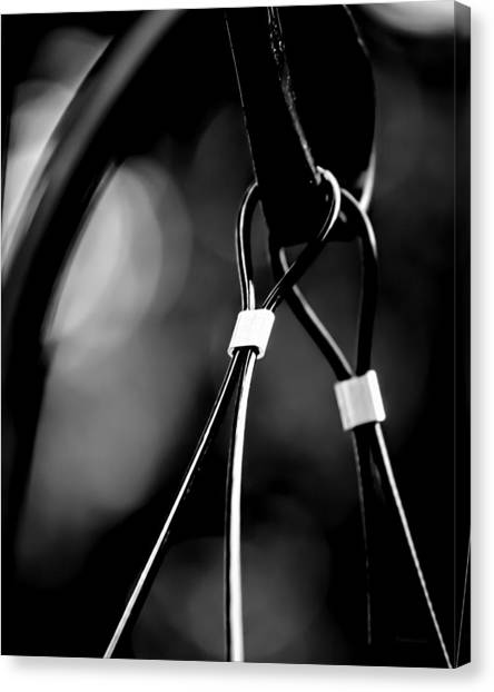 Two Wires On A Pole Canvas Print