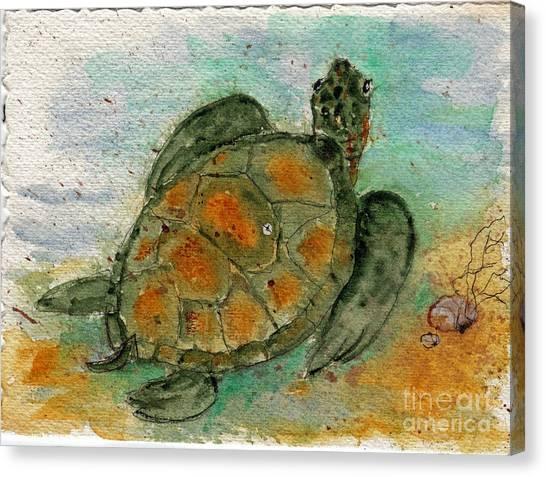 Tybee Sea Turtle Canvas Print