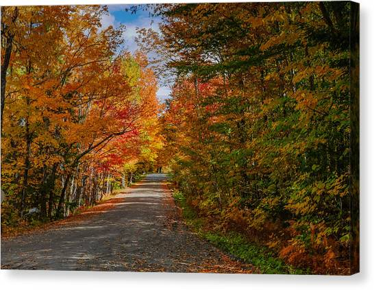 Typical Vermont Dirve - Fall Foliage Canvas Print