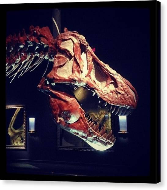 Tyrannosaurus Canvas Print - Tyrannosaurus Rex  Fossel by Eric Dick