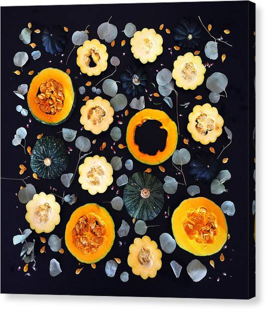 Squash Patterns Canvas Print