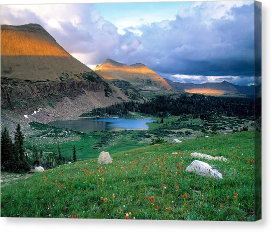 Uinta Canvas Print - Uinta Wilderness by Leland D Howard