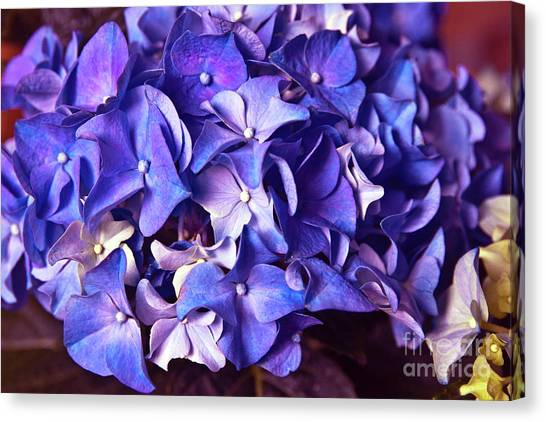 Ultra Violet Dance Canvas Print