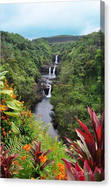 Umauma Falls Hawaii Canvas Print