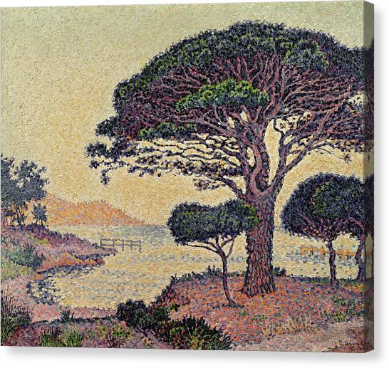 Pointillism Canvas Print - Umbrella Pines At Caroubiers by Paul Signac
