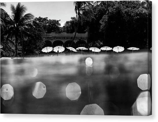Canvas Print featuring the photograph Umbrellas 2 by Nik West