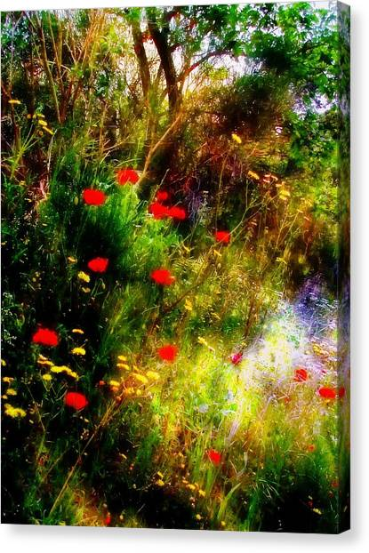 Umbrian Wild Flowers 3 Canvas Print