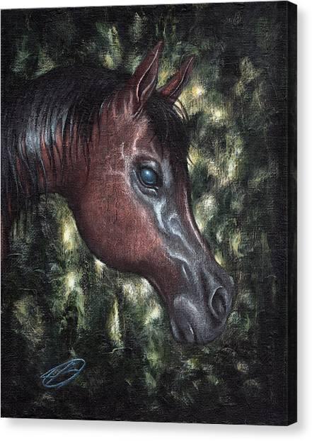 Unbridled Canvas Print