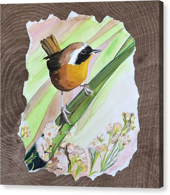 Uncommon Yellowthroat Canvas Print