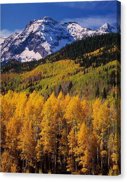 Mountainscape Canvas Print - Uncompahgre National Forest Co Usa by Panoramic Images