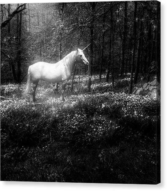 Fantasy Canvas Print - Under A Moonlit Sky  #fantasy #unicorn by John Edwards