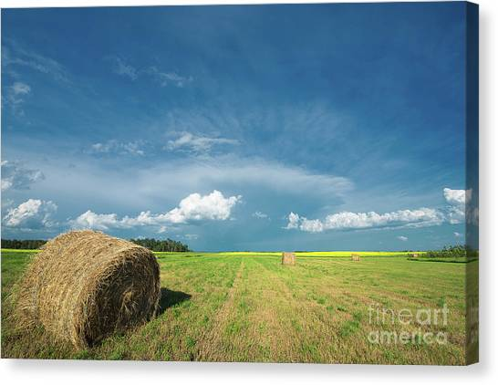 Saskatchewan Canvas Print - Under Prairie Skies by Ian McGregor