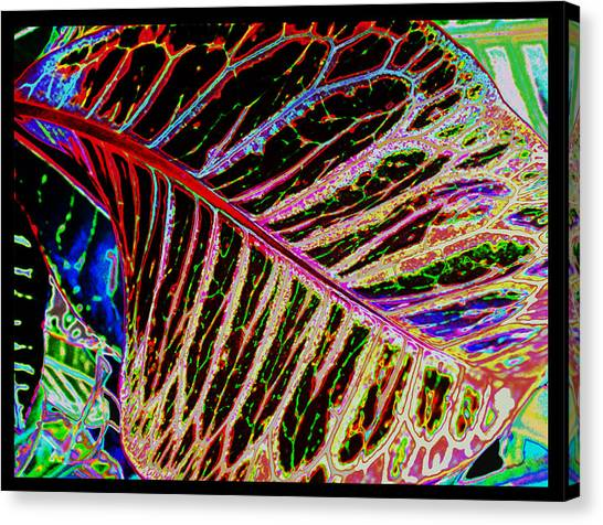 Under The Croton Leaf Canvas Print