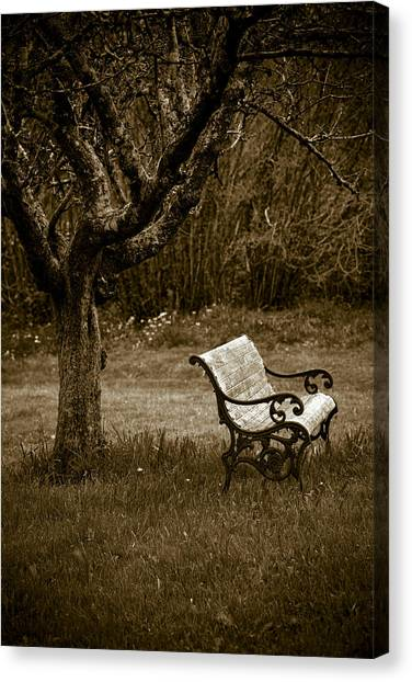 Under The Old Apple Tree Canvas Print by Frank Tschakert