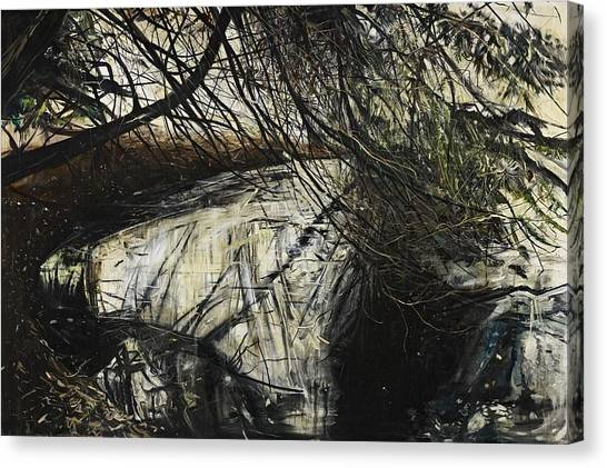 Murky Canvas Print - Undergrowth by Calum McClure
