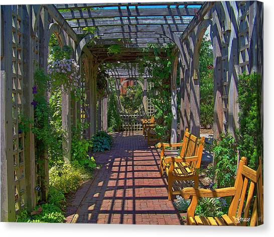 Underneath The Arbor Canvas Print