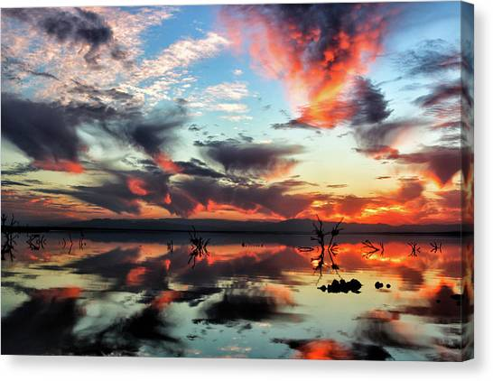 Canvas Print featuring the photograph Underneath The Salton Sky by Mike Trueblood