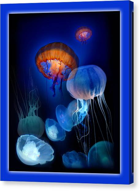 Undersea Dream Canvas Print